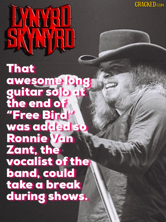 LYNYRD CRACKED COM SKNYRD That awesome log guitar solo at the end of Free Bird'' was added SO Ronnie Van Zant, the vocalist of the band, could take a