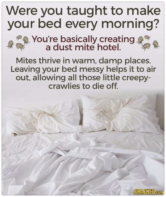 Were you taught to make your bed every morning? You're basically creating a dust mite hotel. Mites thrive in warm, damp places. Leaving your bed messy
