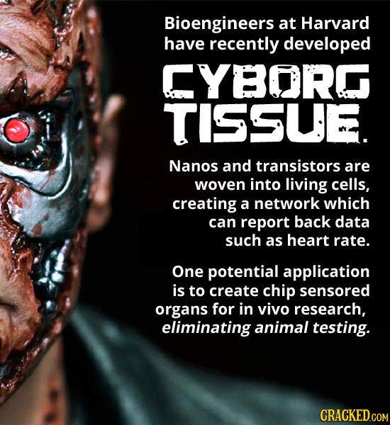 Bioengineers at Harvard have recently developed CYBORG TISSUE. Nanos and transistors are woven into living cells, creating a network which can report