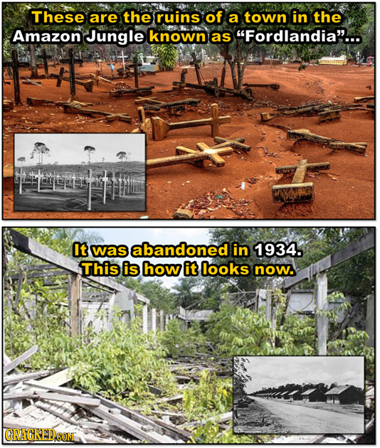 These are the ruins of a town in the Amazon Jungle known as Fordlandia... It was abandoned in 1934. This is how it looks now. CRAGKEDCOM Deom
