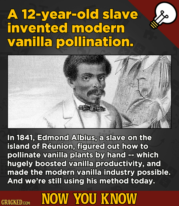 13 Cool Things You Didn't Know About Movies (And Other Stuff) - A 12-year-old slave invented modern vanilla pollination.