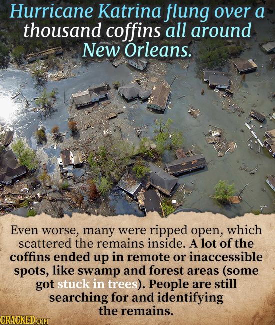 Hurricane Katrina flung over a thousand coffins all around New Orleans. EveN worse, many were ripped open, which scattered the remains inside. A lot o