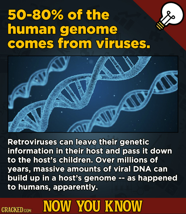 13 Cool Things You Didn't Know About Movies (And Other Stuff) - 50-80% of the human genome comes from viruses.