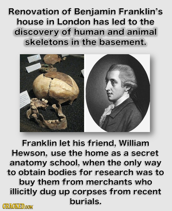 Renovation of Benjamin Franklin's house in London has led to the discovery of human and animal skeletons in the basement. Franklin let his friend, Wil