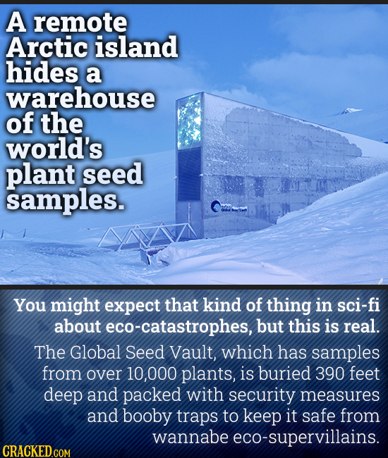 A remote Arctic island hides a warehouse of the world's plant seed samples. You might expect that kind of thing in sci-fi about eco-catastrophes, but