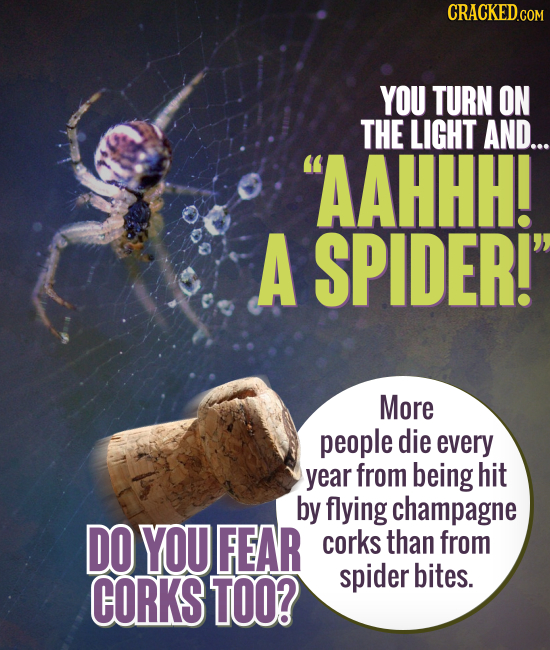 CRACKED.COM YOU TURN ON THE LIGHT AND... AAHHH! A SPIDER! More people die every year from being hit by flying champagne DO YOU FEAR corks than from
