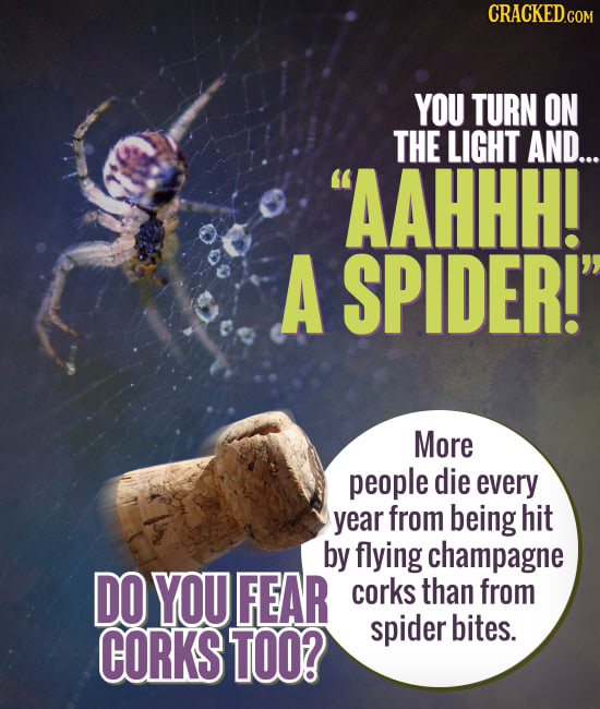 Real Facts That Make Common Fears Less Scary