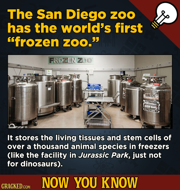 13 Little-Known Facts About Movies, History, And Science - The San Diego ZOO has the world's first frozen ZOO.