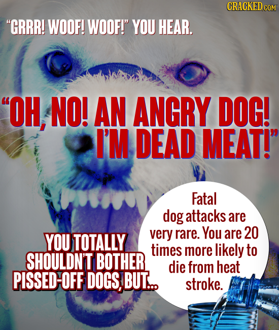 CRACKEDCON GRRR! WOOF! WOOF! YOU HEAR. OH, NO! AN ANGRY DOG! I'M DEAD MEAT! Fatal dog attacks are You YOU TOTALLY very rare. are 20 times more lik