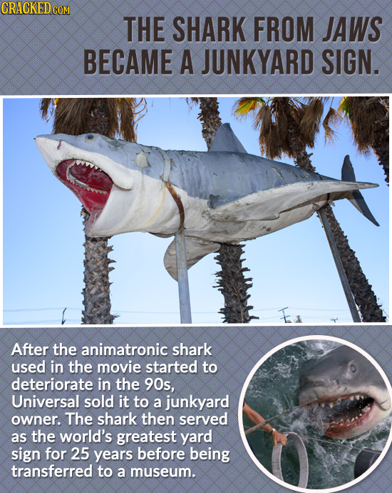 CRACKEDcO THE SHARK FROM JAWS BECAME A JUNKYARD SIGN. After the animatronic shark used in the movie started to deteriorate in the 90s, Universal sold