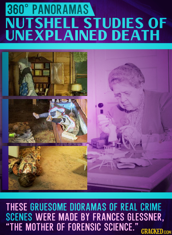 360 PANORAMAS NUTSHELL STUDIES OF UNEXPLAINED DEATH THESE GRUESOME DIORAMAS OF REAL CRIME SCENES WERE MADE BY FRANCES GLESSNER, THE MOTHER OF FORENSI