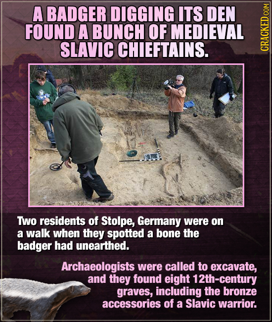 A BADGER DIGGING ITS DEN FOUND A BUNCH OF MEDIEVAL SLAVIC CHIEFTAINS. CRAGA TWo residents of Stolpe, Germany were on a walk when they spotted a bone t
