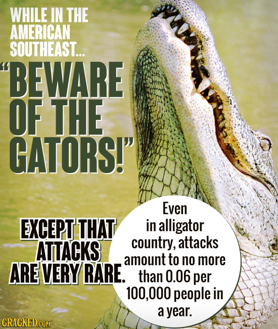 WHILE IN THE AMERICAN SOUTHEAST... BEWARE OF THE GATORS! Even EXCEPT THAT in alligator ATTACKS country, attacks amount to no more ARE VERY RARE. tha