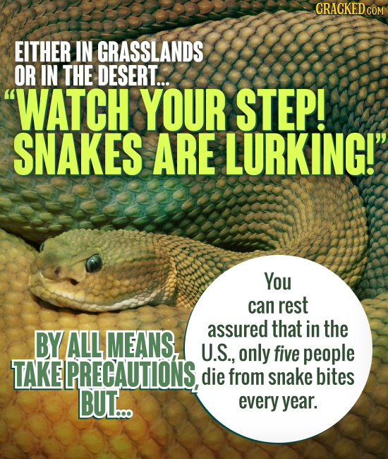 CRACKED EITHER IN GRASSLANDS OR IN THE DESERT... WATCH YOUR STEP! SNAKES ARE LURKING! You can rest assured that in the BY ALL MEANS, U.S., only five