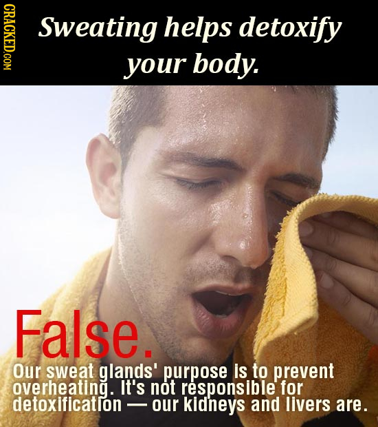 CRACKED.COM Sweating helps detoxify your body. False. Our sweat glands' purpose is to prevent overheating. It's not responsible for detoxificatlon - o