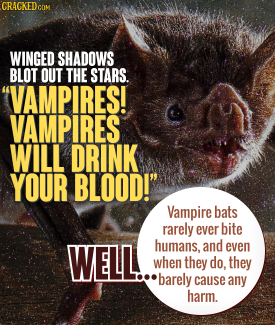 CRACKED CO COM WINGED SHADOWS BLOT OUT THE STARS. VAMPIRES! VAMPIRES WILL DRINK YOUR BLOOD! Vampire bats rarely ever bite WELL. humans, and even whe