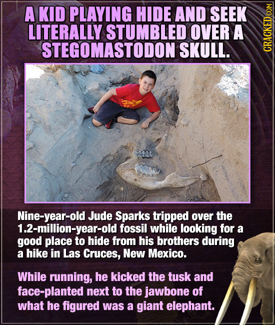 A KID PLAYING HIDE AND SEEK LITERALLY STUMBLED OVER A STEGOMASTODON SKULL. CGRA Nine-year-old Jude Sparks tripped over the 1.2-million-year-old fossil