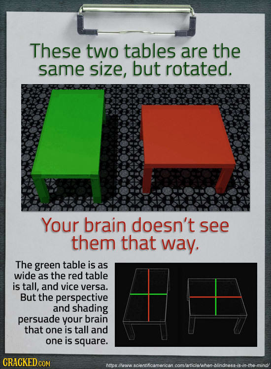 20 Ways Your Perception Gets Screwed Up By Your Brain