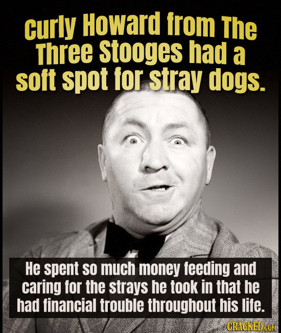 curly Howard from The Three Stooges had a soft spot for stray dogs. He spent SO much money feeding and caring for the strays he took in that he had fi