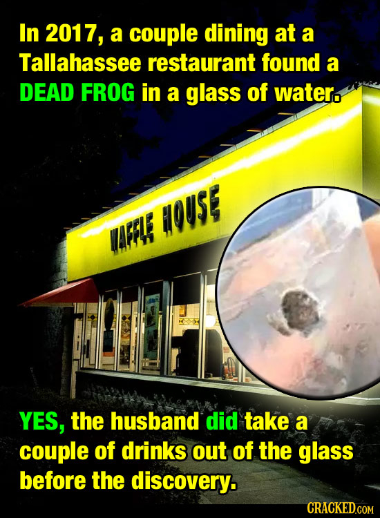 In 2017, a couple dining at a Tallahassee restaurant found a DEAD FROG in a glass of water. OUSE WFE YES, the husband did take a couple of drinks out