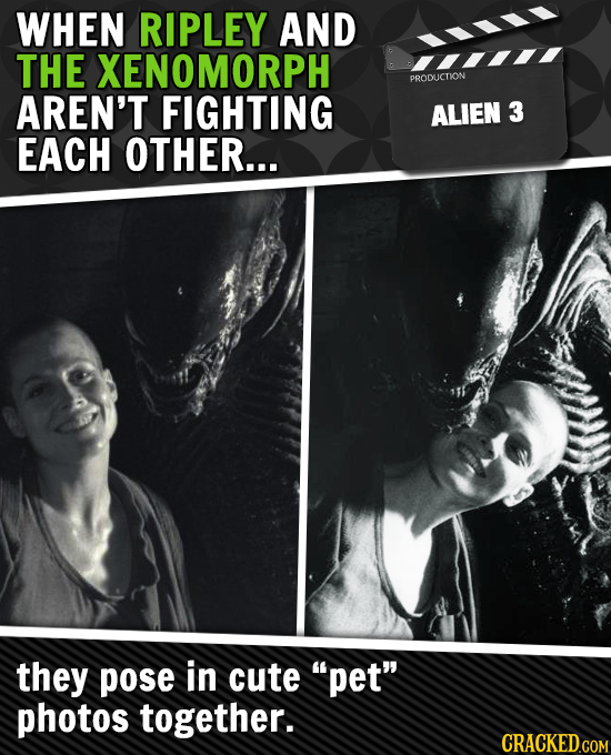 WHEN RIPLEY AND THE XENOMORPH PRODUCTION AREN'T FIGHTING ALIEN 3 EACH OTHER... they pose in cute pet photos together.