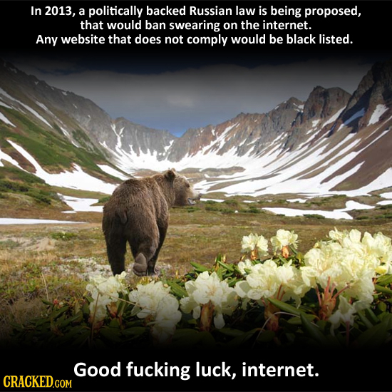 In 2013, a politically backed Russian law is being proposed, that would ban swearing on the internet. Any website that does not comply would be black