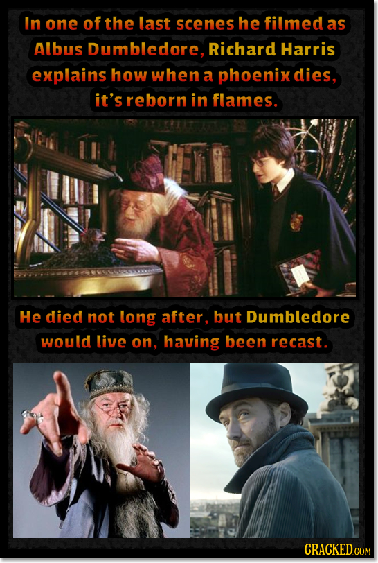 In one of the last scenes he filmed as Albus Dumbledore, Richard Harris explains how when a phoenix dies, it's reborn in flames. He died not long afte