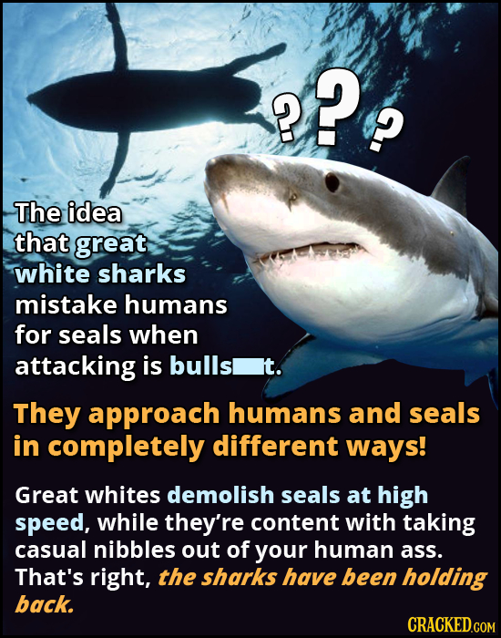 8? P The idea that great white sharks mistake humans for seals when attacking is bulls it. They approach humans and seals in completely different ways