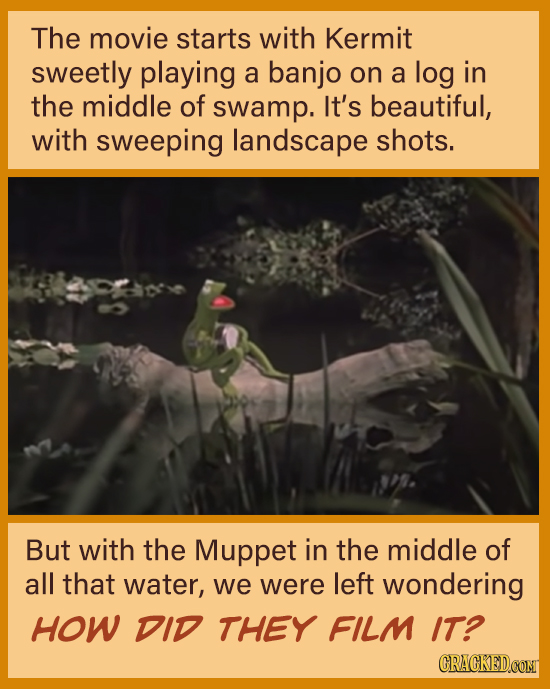 The movie starts with Kermit sweetly playing a banjo on a log in the middle of swamp. It's beautiful, with sweeping landscape shots. But with the Mupp