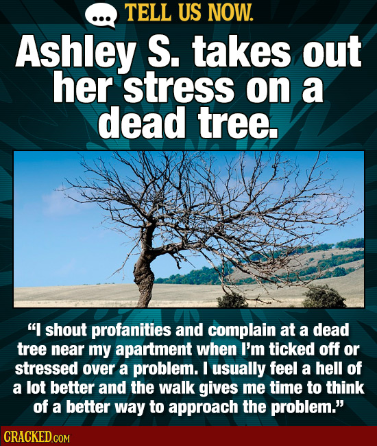 TELL US NOW. Ashley S. takes out her stress on a dead tree. I shout profanities and complain at a dead tree near my apartment when I'm ticked off or