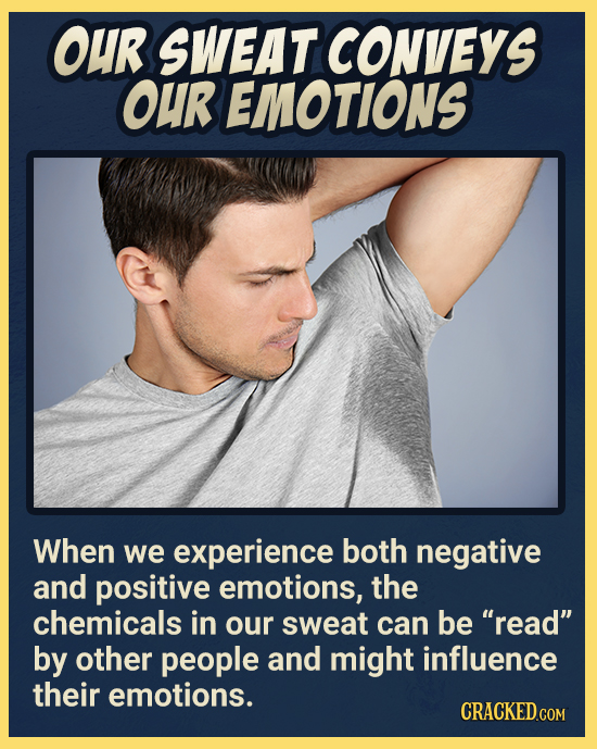 OUR SWEAT CONVEYS OUR EMOTIONS When we experience both negative and positive emotions, the chemicals in our sweat can be read by other people and mi