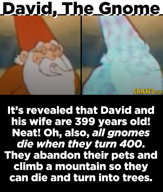 David,. The Gnome It's revealed that David and his wife are 399 years old! Neat! Oh, also, all gnomes die when they turn 400. They abandon their pets