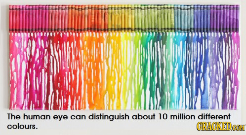 The human eye can distinguish about 10 million different colours. CRACKEDOG