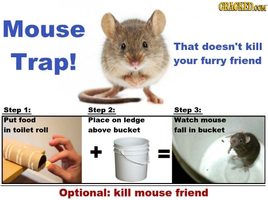 GRAGKODA Mouse That doesn't kill Trap! your furry friend Step 1: Step 2: Step 3: Put food Place on ledge Watch mouse in toilet roll above bucket fall
