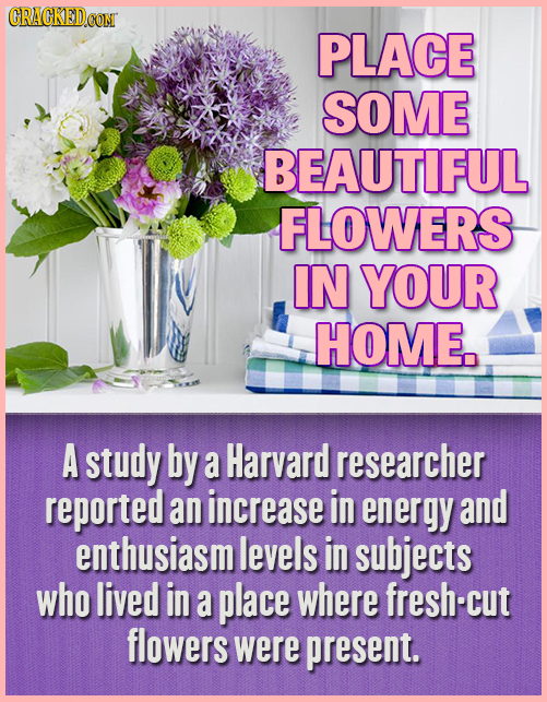 CRACKEDCON PLACE SOME BEAUTIFUL FLOWERS IN YOUR HOME. A study by a Harvard researcher reported an increase in energy and enthusiasm m levels in subjec