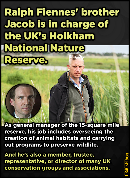 Ralph Fiennes' brother Jacob is in charge of the UK's Holkham Nationall Nature Reserve. As general manager of the 15-square mile reserve, his job incl