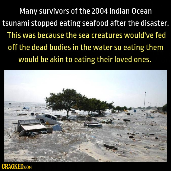 Many survivors of the 2004 Indian Ocean tsunami stopped eating seafood after the disaster. This was because the sea creatures would've fed off the dea