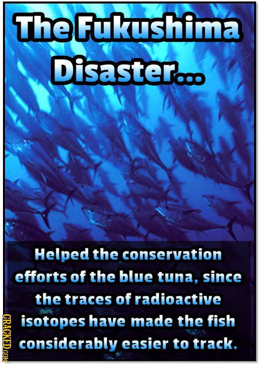 TheFukushima Disaster... Helped the conservation efforts of the blue tuna, since the traces of radioactive CRaCKEDcom isotopes have made the fish cons