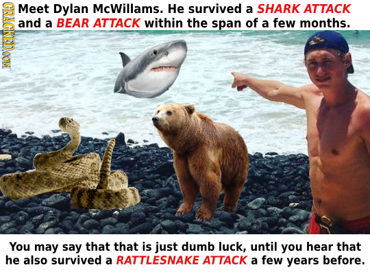 GRAGKEIDOON Meet Dylan McWillams. He survived a SHARK ATTACK and a BEAR ATTACK within the span of a few months. You may say that that is just dumb luc