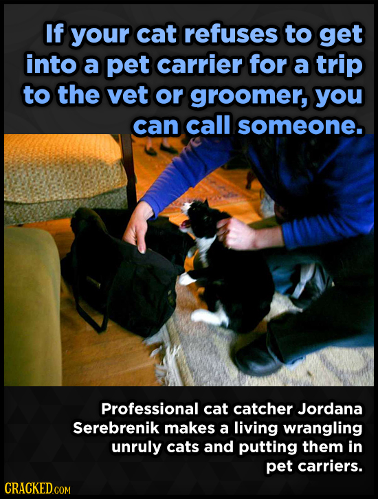 If your cat refuses to get into a pet carrier for a trip to the vet or groomer, you can call someone. Professional cat catcher Jordana Serebrenik make
