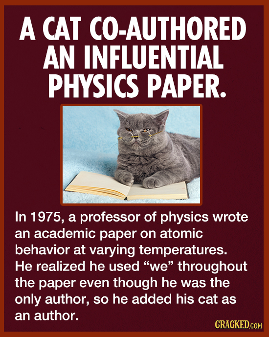 A CAT CO-AUTHORED AN INFLUENTIAL PHYSICS PAPER. In 1975, a professor of physics wrote an academic paper on atomic behavior at varying temperatures. He