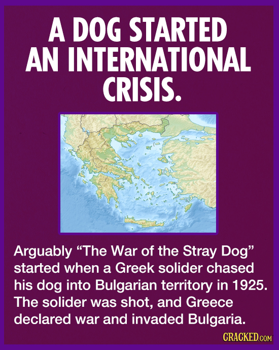 A DOG STARTED AN INTERNATIONAL CRISIS. Arguably The War of the Stray Dog started when a Greek solider chased his dog into Bulgarian territory in 192