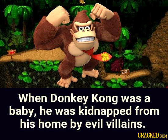 DK When Donkey Kong was a baby, he was kidnapped from his home by evil villains.