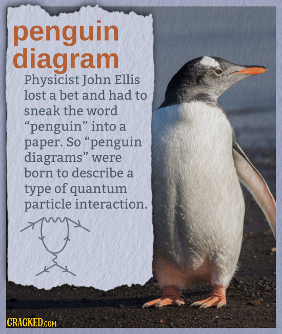 penguin diagram Physicist John Ellis lost a bet and had to sneak the word penguin into a paper. So penguin diagrams were born to describe a type o