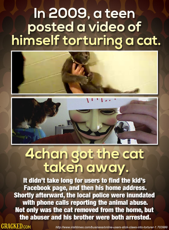 In 2009, a teen posted a video of himself torturing a cat. 4chan got the cat taken away. It didn't take long for users to find the kid's Facebook page