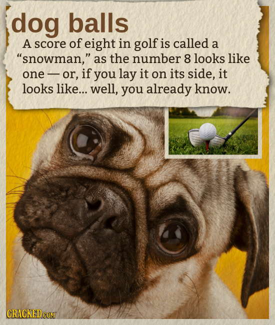 dog balls A score of eight in golf is called a snowman, as the number 8 looks like one or, if you lay it on its side, it looks like... well, you alr