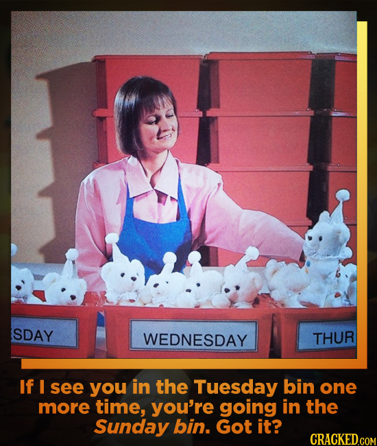 SDAY WEDNESDAY THUR If I see you in the Tuesday bin one more time, you're going in the Sunday bin. Got it?