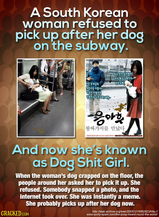 A South Korean woman refused to pick up. after her dog on the subway. 901902 11072 E7YO NOVAM XSUR CULHO VXO  OPSHOD0 RWDE Tote u And now she's known