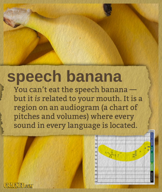 speech banana You can't eat the speech banana - but it is related to your mouth. It is a region on an audiogram (a chart of pitches and volumes) where