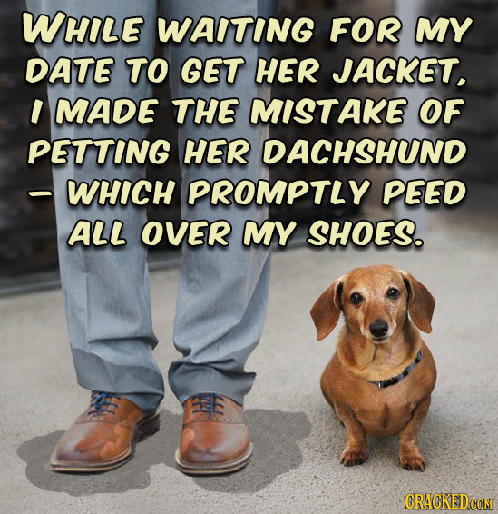 WHILE WAITING FOR MY DATE TO GET HER JACKET, I MADE THE MISTAKE OF PETTING HER DACHSHUND - WHICH PROMPTLY PEED ALL OVER MY SHOES. E
